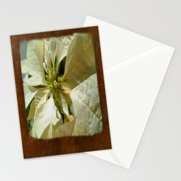Pale Yellow Poinsettia 1 Blank P3F0 Stationery Cards