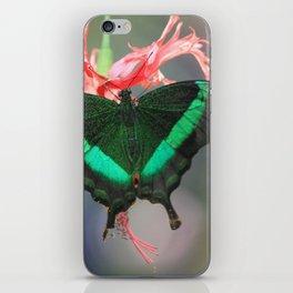Flutterby iPhone Skin