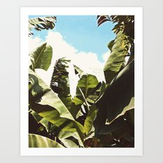 Silent Compilation #society6 #decor #buyart Art Print