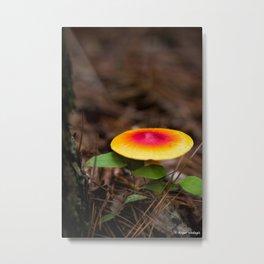 Red And Yellow Mushroom Metal Print