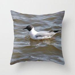 Bonaparte Gull Nine Throw Pillow