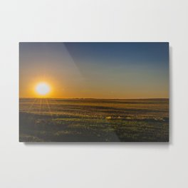 Glowing Fields, Golden Valley County, North Dakota Metal Print