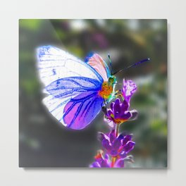 Butterfly on the Lavender Metal Print