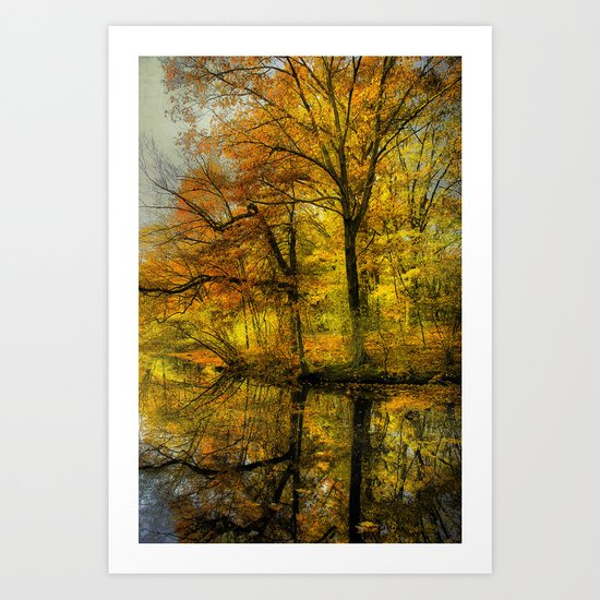Fall colors of New England Art Print