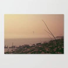 From The Haze Canvas Print