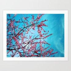 Cyan Sky Art Print