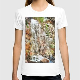 Bad Branch Falls T-shirt