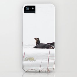 Three Otters iPhone Case