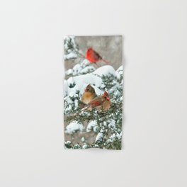 After the Snow Storm: Three Cardinals Hand & Bath Towel