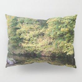 Water of Leith Edinburgh 2 Pillow Sham