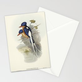 Kingfisher vintage art Stationery Cards