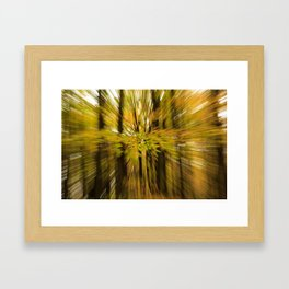 Zoom Wush Framed Art Print