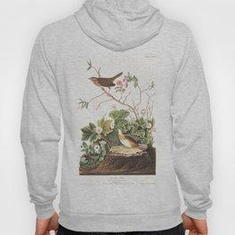 Lincoln finch, Birds of America, Audubon Plate 193 Hoody