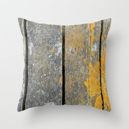 Ocean Weathered Wood With Lichen Throw Pillow