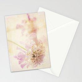Soft Pink Stationery Cards