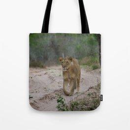 Female Lion at Tembe Elephant Park Tote Bag