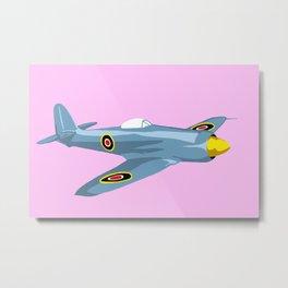 World War II Plane 3 Metal Print
