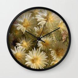Fynbos Treasures Wall Clock