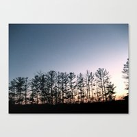 north carolina Canvas Prints featuring North Carolina  by n o a h