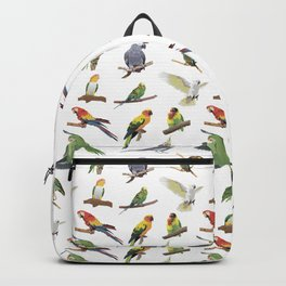Various Colorful Parrots Backpack