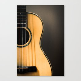 light and shapes Canvas Print