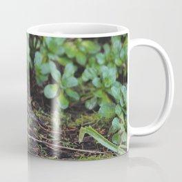 Small Mendocino Bird Coffee Mug