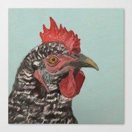 Plymouth Barred Rock Chicken Portrait Canvas Print