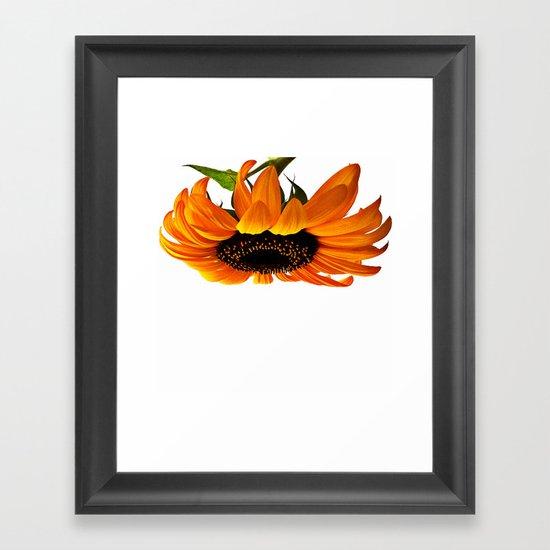 FLOWER 032 Framed Art Print