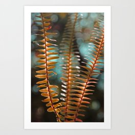Autumn Ferns in Orange and Blue Art Print