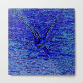gull in flight, blue Metal Print