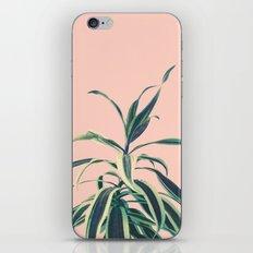 Botany iPhone & iPod Skin