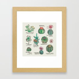 Cactus Dictionaly page1 Framed Art Print