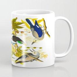 Yellow-billed Magpie Bird Coffee Mug