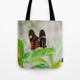 Butterfly Pair Tote Bag
