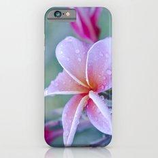sweet things iPhone 6s Slim Case