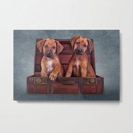 Drawing puppies Rhodesian Ridgeback Metal Print