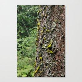 Green Nature Canvas Print