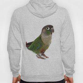 Zeph - Green Cheek Conure Hoody