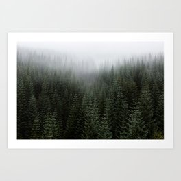 Dizzying Misty Forest Art Print