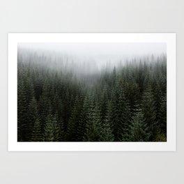Dizzying Misty Forest Art Print