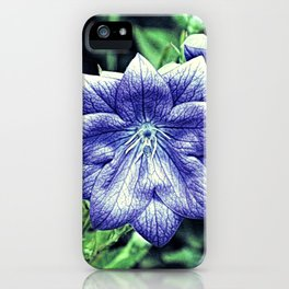 Purple Balloon Flower Floral Art A105 iPhone Case