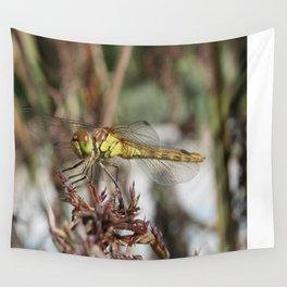 Brown Dragonfly On Husks With Garden Background Wall Tapestry