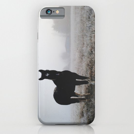 Frosty Klamath Horse iPhone & iPod Case