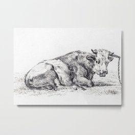 Lying Cow 1825 By Jean Ber Metal Print