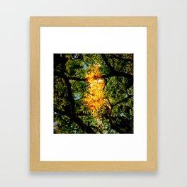 adeerpark Framed Art Print