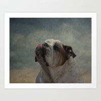 bulldog Art Prints featuring Bulldog by Mary Kilbreath