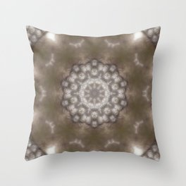 Silver and gold CB Throw Pillow