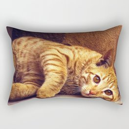 Relaxing Orange Tabby Cat Rectangular Pillow