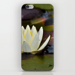 Waterlily with purple iPhone Skin