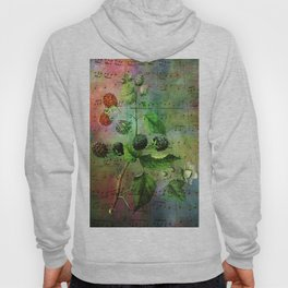 Blackberry Music, Vintage Botanical Illustration Collage Art Hoody